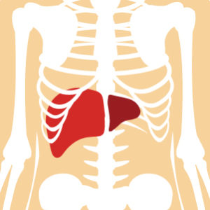 Hepatitis C Update for Clinicians—Important Information on Prevalence and Treatment