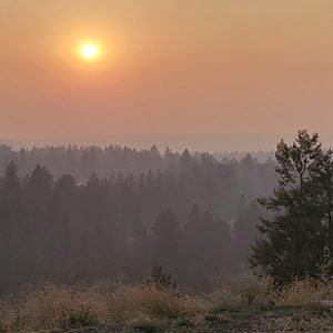 Joint Release: Wildfire Season is approaching; Spokane-area agencies encourage residents to prepare now