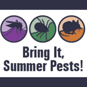 Bring It, Summer Pests!